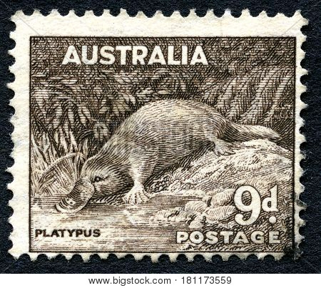 AUSTRALIA - CIRCA 1937: A used postage stamp from Australia depicting an illustration of a Platypus circa 1937.