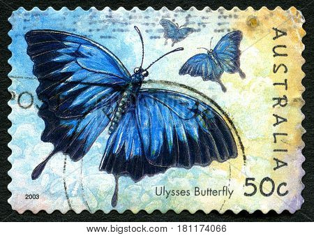 AUSTRALIA - CIRCA 2003: A used postage stamp from Australia depicting an illustration of a Ulysses Butterfly circa 2003.