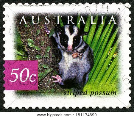 AUSTRALIA - CIRCA 2003: A used postage stamp from Asutralia depicting an image of a Striped Possum circa 2003.