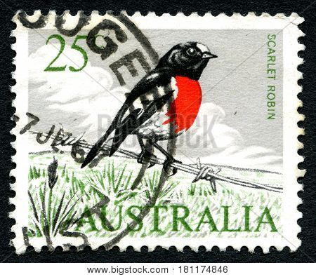 AUSTRALIA - CIRCA 1963: A used postage stamp from Australia depicting an illustration of a Scarlet Robin circa 1963.