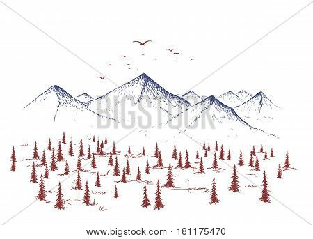 mountain and forest.Graphic landscape of nature.Vector nand drawn style