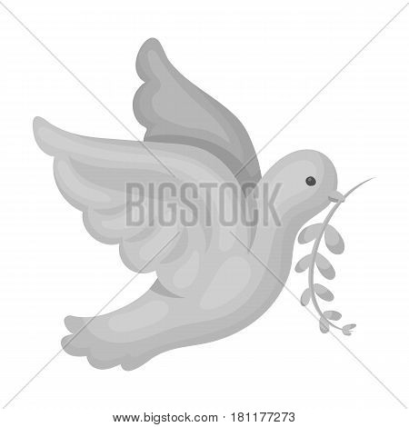 Pigeon of the World with a twig in its beak.Hippy single icon in monochrome style vector symbol stock illustration .