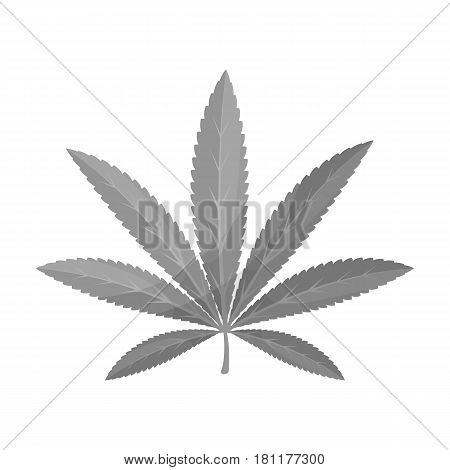 Green leaf of hemp.Hippy single icon in monochrome style vector symbol stock illustration .