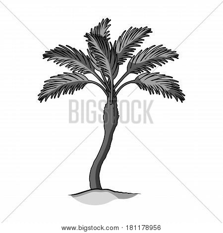 Palm beach tree.Summer rest single icon in monochrome style vector symbol stock web illustration.
