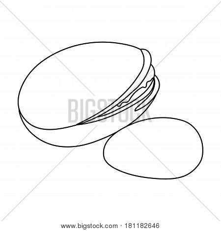 Green pistachio in the shell.Different kinds of nuts single icon in outline style vector symbol stock web illustration.