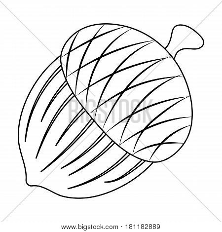 An acorn with a hat.Different kinds of nuts single icon in outline style vector symbol stock web illustration.