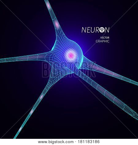 3D neuron model. Vector graphic design element for science publication.