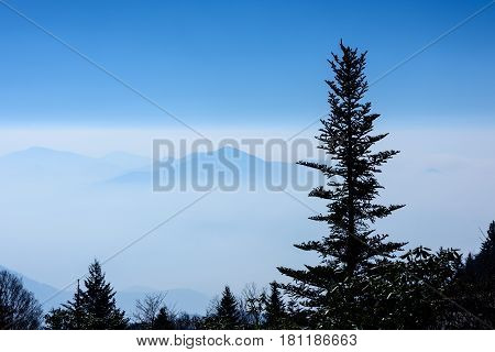 View from high above of the Smoky Mountains in a low cloud bank.