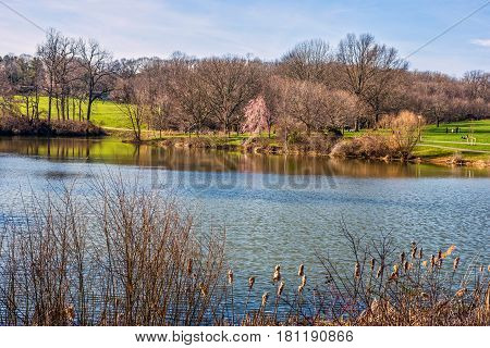 A view of the lake in Holmdel Park on a nice Spring day.