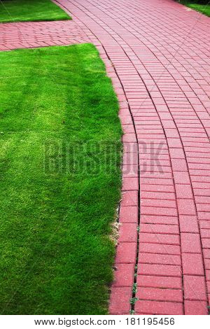Garden stone path with grass growing up between and around stones Brick Sidewalk