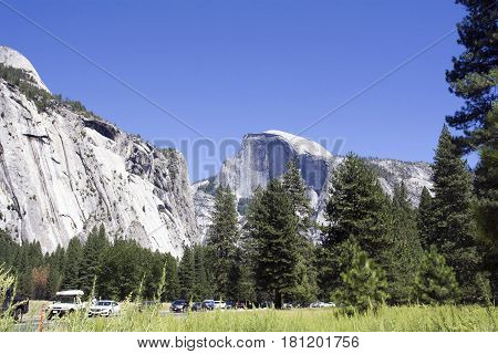 Views Of Trees, Cliffs, And Mountains In Yosemite