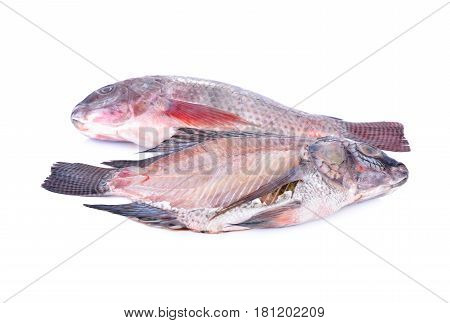 whole and cross section of fresh Nile Tilapia fish on white background