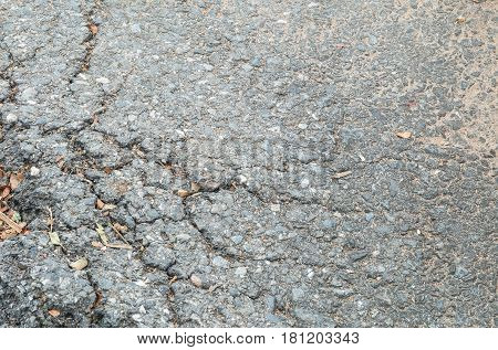 Closeup surface damaged road destroyed by tree roots textured background