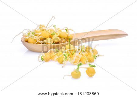 snow pea sprouts in wooden spoon isolated on white background