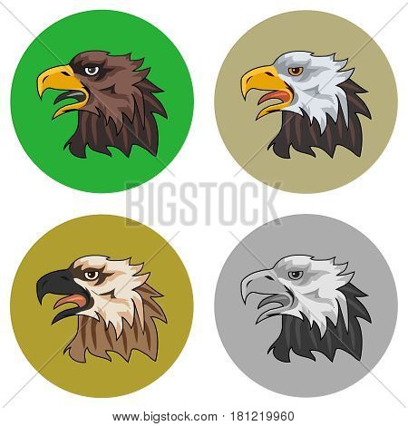 The eagle the head of the eagle. Flat design vector illustration vector.