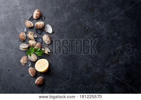 Fresh seafood on stone table. Scallops. Top view with copy space