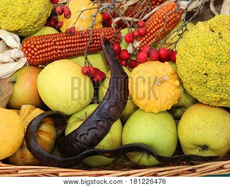 Pumpkins Carob Panicles..and Apples In A Greengrocer