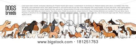 Background with place for text and different thoroughbred dogs. horizontal orientation banner, flyer, header for site