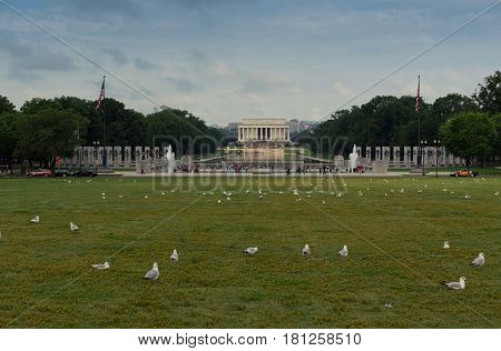 birds in front of Lincoln Memorial Washington D.C. USA