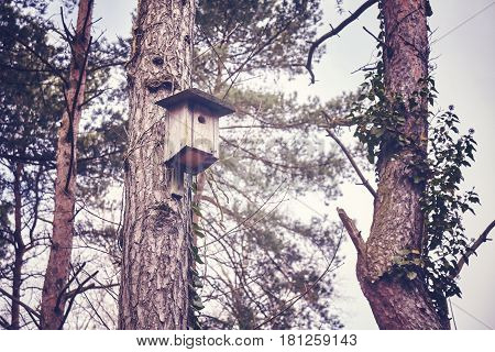 Wooden birdhouse on a tree in forest shelter for birds color toning applied selective focus.