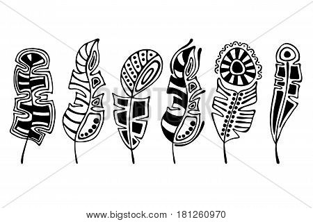 Vector Set Of Hand Drawn Illustration, Decorative Ornamental Stylized Feather. Black And White Graph