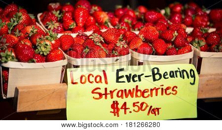Fresh  strawberries at a farmer's market in Nova Scotia