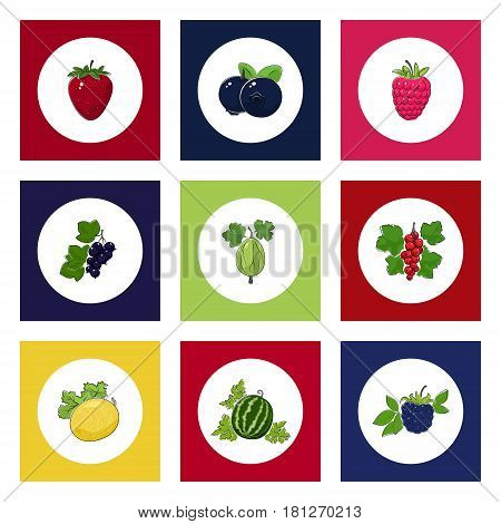 White Round Icons with Fruit and Berry on Colorful Background, Strawberry and Gooseberry, Raspberries and Blueberries, Redcurrant and Blackberry, Watermelon and Blackcurrant, Melon, Vector Illustration