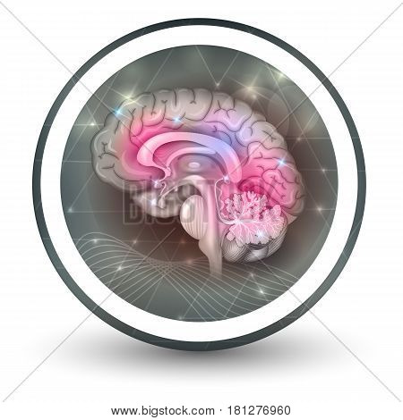 Brain Round Shape Icon