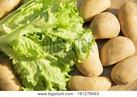 Green lettuce leaves and potatoes. Lettuce leaves on wooden background. Fresh lettuce on kitchen table. Healthy organic food.