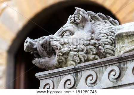 Head of boar. Sculpture of the Renaissance in Piazza della Signoria in Florence, Italy