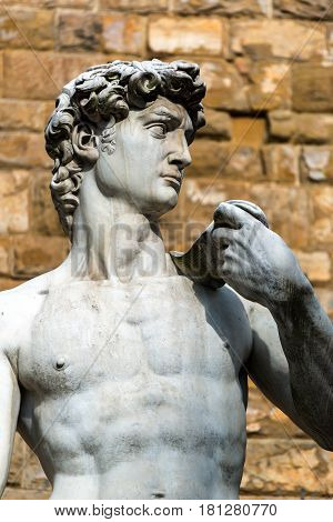 Statue of Michelangelo's David in front of the Palazzo Vecchio in Florence, Italy