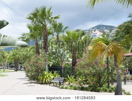 The walkway along tropical plants in Charlotte Amalie town on St.Thomas island (U.S. Virgin Islands).