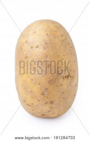 Potato Tuber Vertical