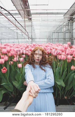 Redhead girl holding hand falling on pink field of tulips in orangery