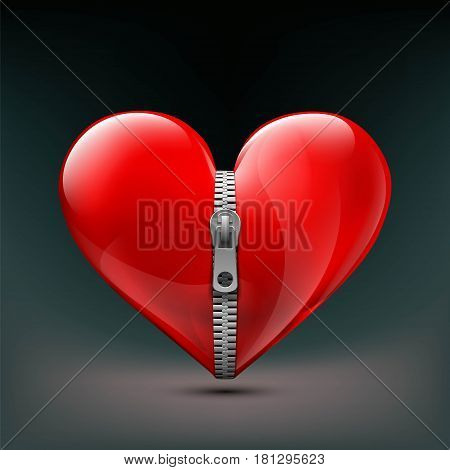 Realistic icon of human red heart with zipper. Stock vector illustration.
