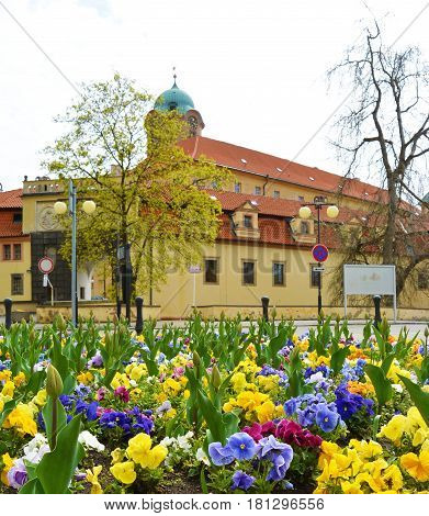 Closeup view on flowerbed on central square of Czech spa city Podebrady, which is castle