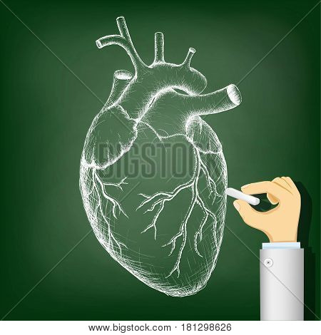 Human heart drawing on a blackboard. Health and Medicine. Stock vector illustration.