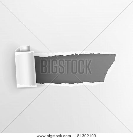 Torn Paper With Curls Vector. Realistic Paper Hole.