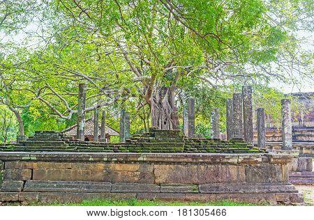Visiting Dalada Maluwa In Polonnaruwa