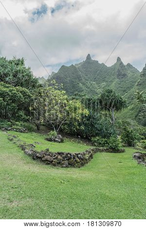 Lush Green:looking across lush green landscape, towards the mountains, at the Limahuli Garden and Preserve-National Botanical Garden, Ha'ena, Halele'a, Kauai, Hawaii, on March 24, 2017, mid-morning