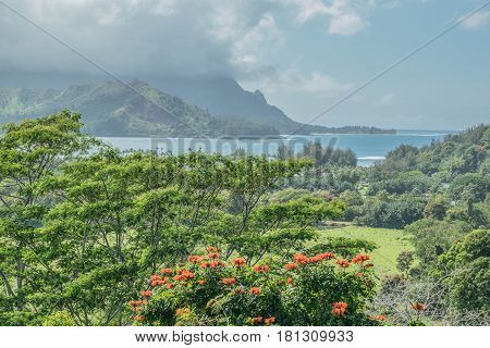 Beautiful Hanalei: lush, tropical landscape, Hanalei Bay and mountains, on a cloudy day on Kauai