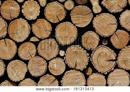 Image of Background of Stacked Wooden Logs