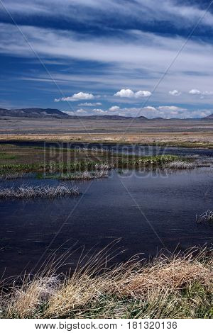 Beautiful spring day at the wetlands in the San Luis Valley near Alamosa, Colorado