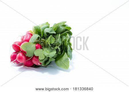 Fresh Radish With Green Leaves Isolated In White Background