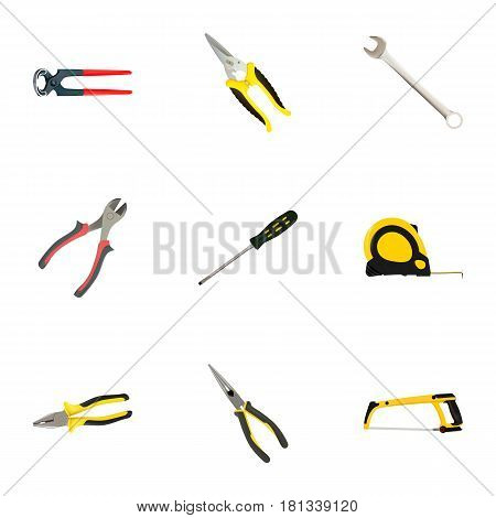 Realistic Nippers, Forceps, Carpenter And Other Vector Elements. Set Of Instruments Realistic Symbols Also Includes Noise, Pincers, Hacksaw Objects.