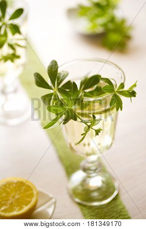 Woodruff Punch with Woodruff Herbs on bright background