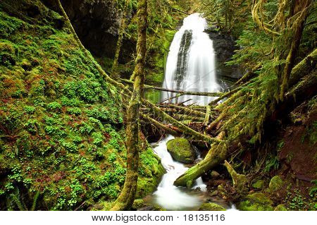 Oregon waterfall portrait