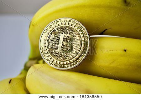 Gold bitcoin coin on fresh tasty and yellow bananas