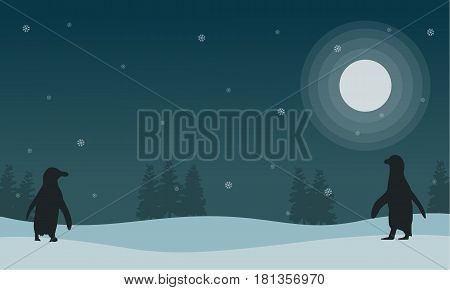 Snow scenery at night with penguin silhouettes vector illustration