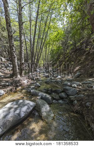 Arroyo Seco creek above Switzer Falls in the San Gabriel Mountains area of the Angeles National Forest near Los Angeles, California.